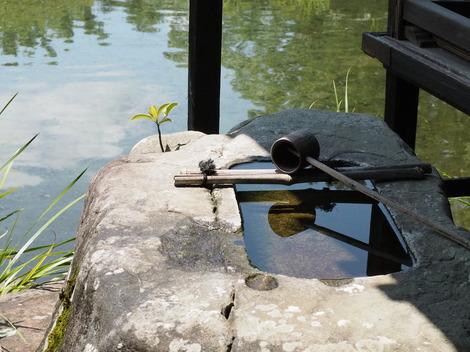 大きな自然石をくりぬいて造られた手水鉢.JPG