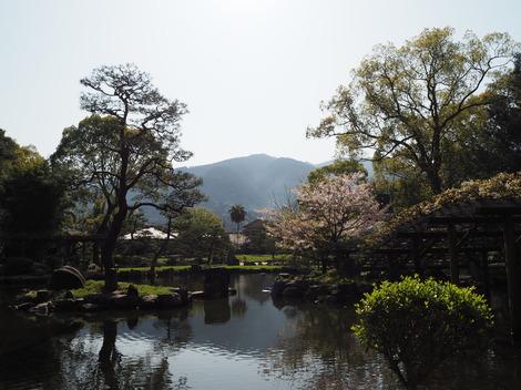 春の穏やかな快晴1.JPG