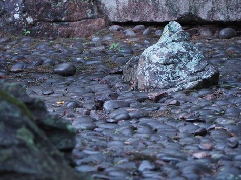 雨の枯川.JPG